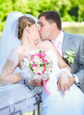 Portrait of newly married couple kissing at park at sunny day — Stock Photo