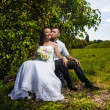 Bride and groom sitting and kissing at park under tree — Stock Photo