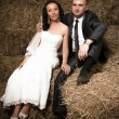 Newly married couple sitting on big stack of hay — Stock fotografie #42117597