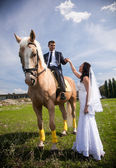 Groom riding a horse giving hand to brunette bride — Stock Photo