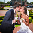 Bride and groom kissing while holding glasses of champagne — Stock Photo #42396891