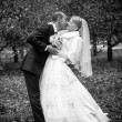 Bride and groom kissing passionately at park — Stock Photo