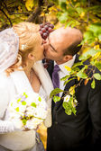 Newly married couple kissing at vineyard — Stock Photo