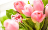Closeup shot of bunch of pink tulips — Stock Photo