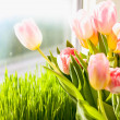 Photo of pink tulips against grass on windowsill — Stock Photo #43228447