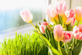 Photo of pink tulips against grass on windowsill — Stock Photo