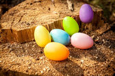 Shot of colorful easter eggs on wooden stump — Stock Photo