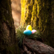 Photo of colored eggs hidden under tree at forest — Stock Photo #43419507