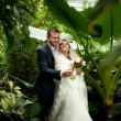 Groom holding bride under palms at jungle — Stock Photo #43438021