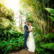 Bride and groom hugging under bamboo at jungle — Stock Photo
