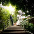 Married couple standing on bridge at rain forest — Stock Photo