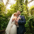 Bride and groom hugging under palm at rain forest — Stock Photo