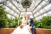 Casal sentado sob uma cúpula de vidro em estufa — Fotografia Stock