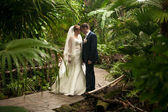 Just married couple walking on path at jungles — Stock Photo