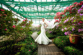 Bride in dress with long veil standing on path at greenhouse — Stock Photo