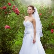 Brunette bride walking at rose garden — Stock Photo #43707845