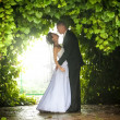 Bride and groom hugging under trees — Stock Photo #43707855