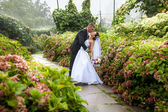 Groom bending over bride at park — Stock Photo