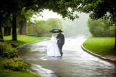 Couple under umbrella walking away on road at park — Stock Photo