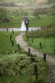 Recién casados caminando sobre colinas en día lluvioso — Foto de Stock