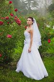 Portrait of sexy bride walking at rose garden — Zdjęcie stockowe