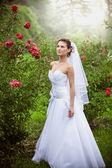 Brunette bride walking at rose garden — Stock Photo