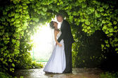 Bride and groom hugging under trees — Stock Photo