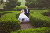 Bride and groom running at garden maze — Стоковое фото