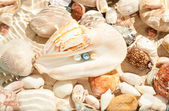 Three pearls in big seashell underwater — Stock Photo