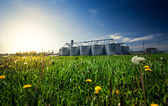 Photo of grain elevators in meadow at sunset — Stock Photo