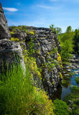 Photo of high cliff on river grown with flowers and grass — Stock Photo