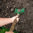 Photo of gardener digging soil with shovel — Stock Photo #46566343
