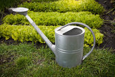 Galvanized watering can on garden bed at sunny day — Stock Photo