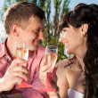 Portrait of newly married couple drinking champagne at field — Stock Photo