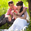 Young groom presenting flower to bride under tree at park — Stock Photo #46821781
