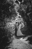 Monochrome photo of bride and groom kissing under high trees — Stock Photo
