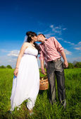 Bride and groom holding picnic basket and kissing at field — Foto de Stock