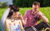 Damat gelini piknik üzüm ile besleme portresi — Stok fotoğraf