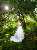 Bride in long dress under big trees at old forest — Foto de Stock