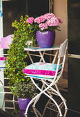 Metal chair, garden table and plants in pots — Stock Photo