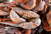 Hoto of pile of frozen black crabs  — Stock Photo