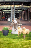 Decorative sheep at big shopping mall — Stock Photo