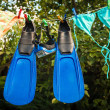 Snorkeling equipment drying on clothesline — Stock Photo #50943903