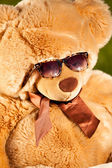 Teddy bear in sunglasses having sunbath  — Stock Photo