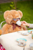 Photo of girl giving tea to teddy bear in sunglasses — Stock Photo