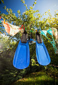 Flippers and snorkeling mask drying on clothesline — Stock Photo