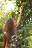 Brunette girl reaches green apple on tree at sunny day — Stock Photo