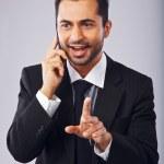 Businessman Having a Conversation on Phone — Stock Photo #24966451