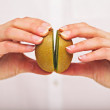 Putting Two Segments of Kiwi Together — Stock Photo