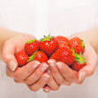 Hand Full of Strawberries — Stock Photo